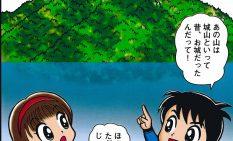 縦写真・マンガ津久井城