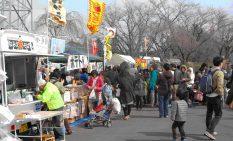 仙台市内で開かれた昨年の様子
