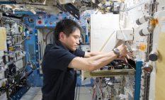 「きぼう」で実験を行う大西宇宙飛行士