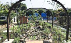 都市部で自然な水野循環を生み出すビオトープ